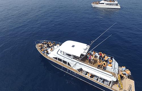 個人或團体包船服務image1