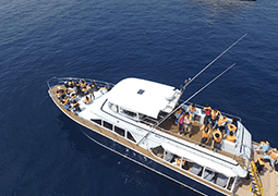 Private charter cruise