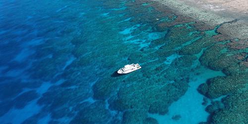那覇から憧れの海、ケラマ(慶良間)諸島への日帰りツアー がメイン。