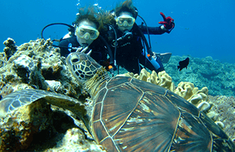 Experience Diving Tour1